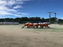 17-2-2硬式庭球部(写真).png